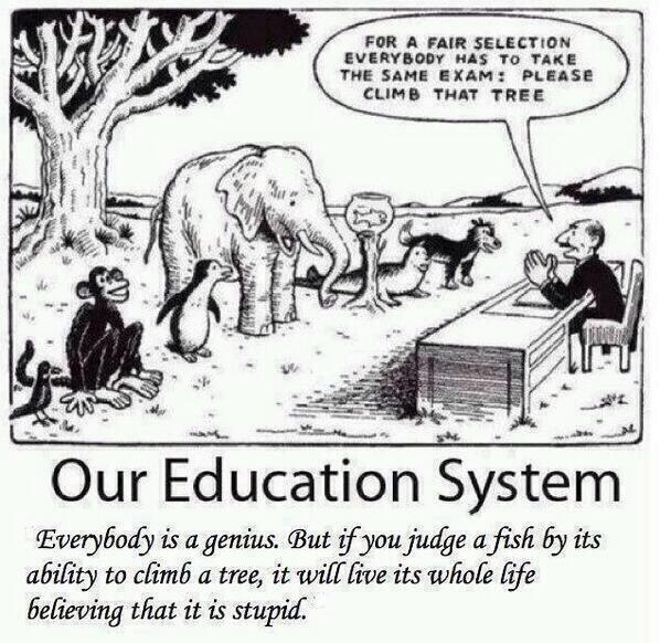 THE EXAM SYSTEM IS FLAWED